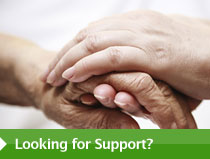Looking for Support?